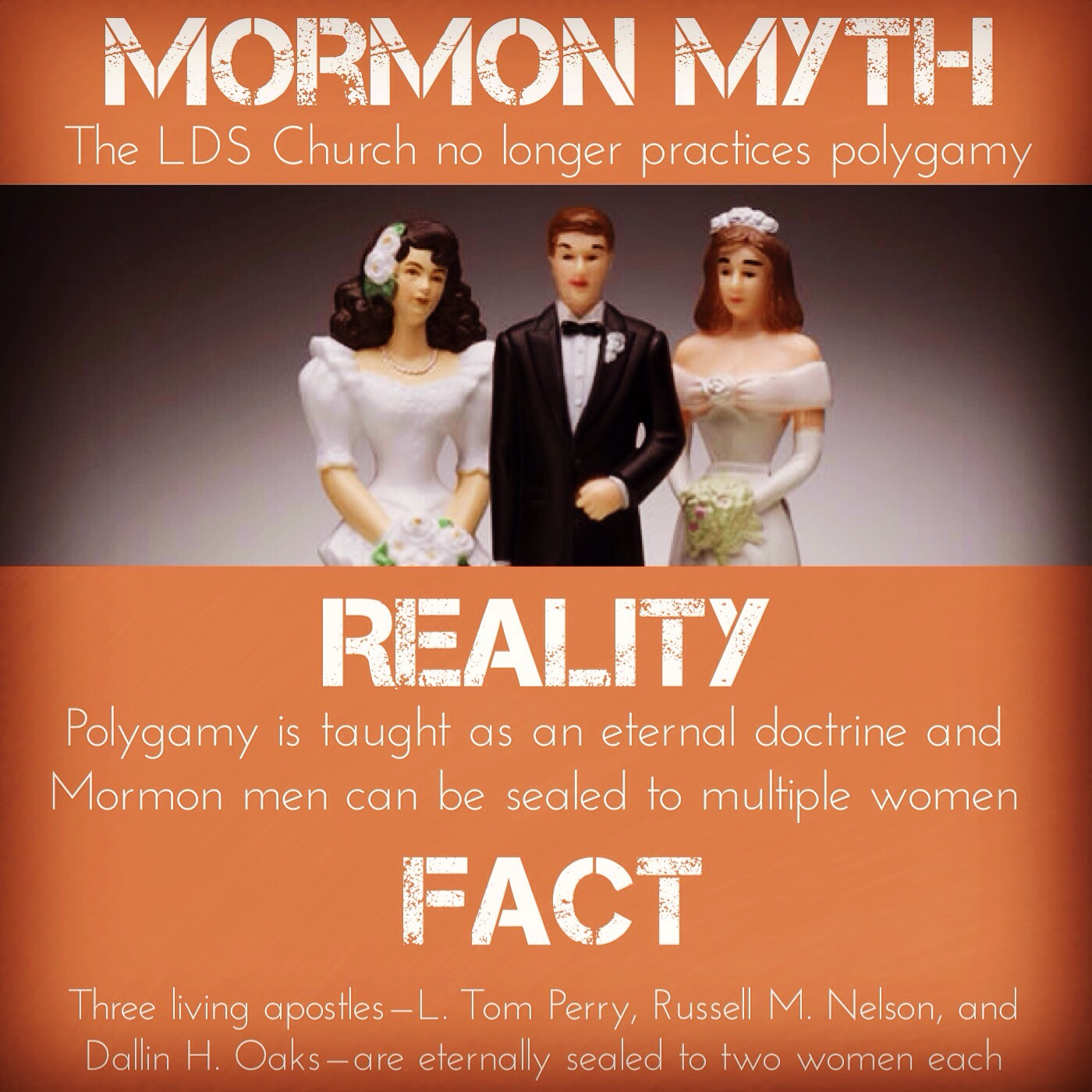 Modern polygamists